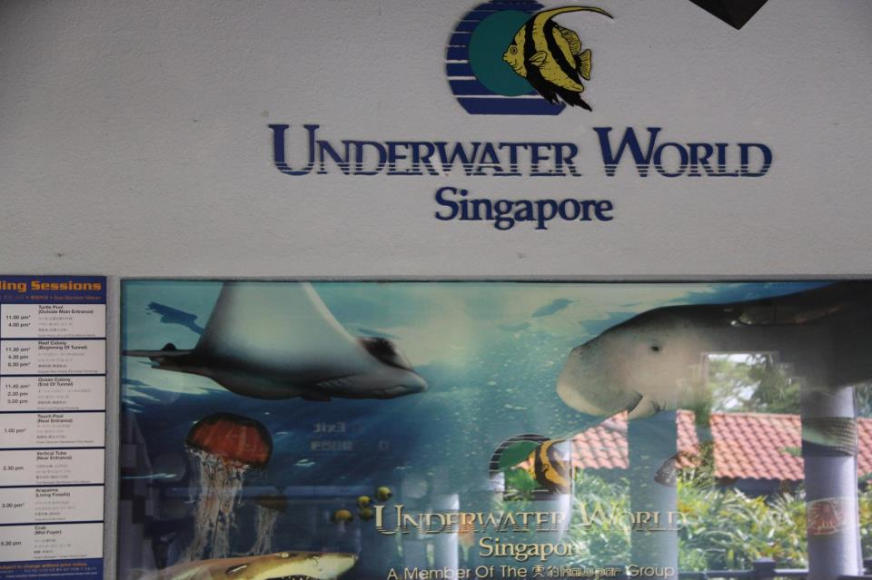 Universal Studios Singapore Underwater World underwaterworld jpg