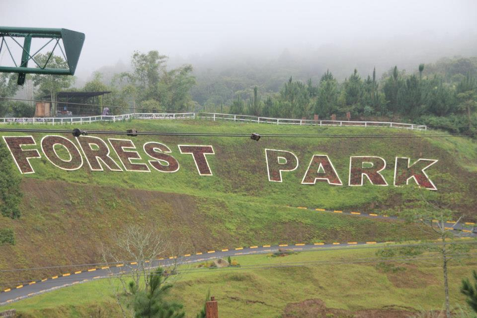 We stayed in Forest Park, where the accommodations are great and the surroundings are beautiful.
