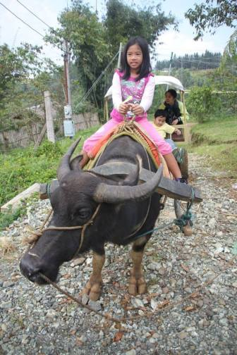 Highlight 9: My girls' firsts! This is Danae's first time to ride a carabao. :)