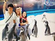 Summer Fun at Manila Ocean Park