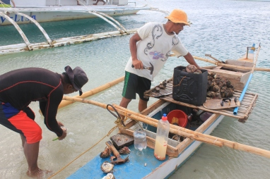 that big container of oysters for only 300 pesos!
