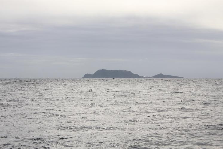 the island is shaped like a turtle!